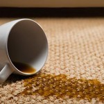 carpet-stain_carpet-inspector